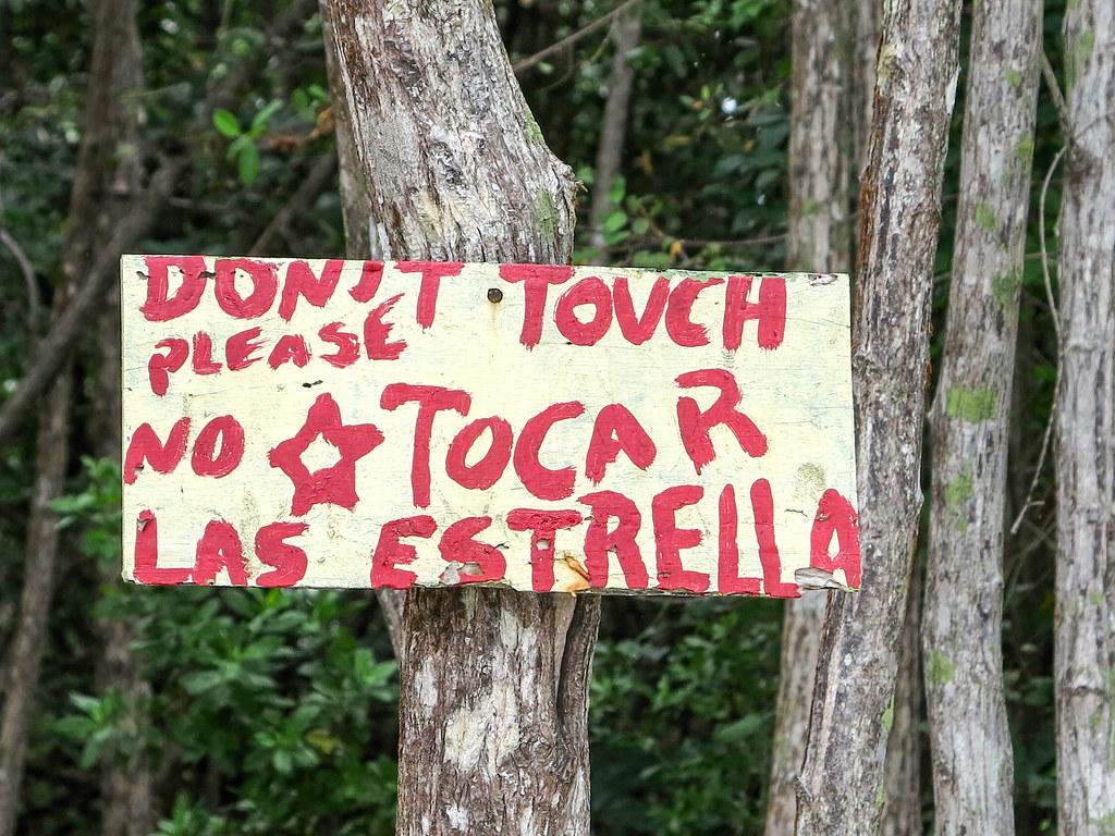Cartel Playa Estrella