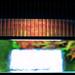 ADA Solar RGB - ROCKS!