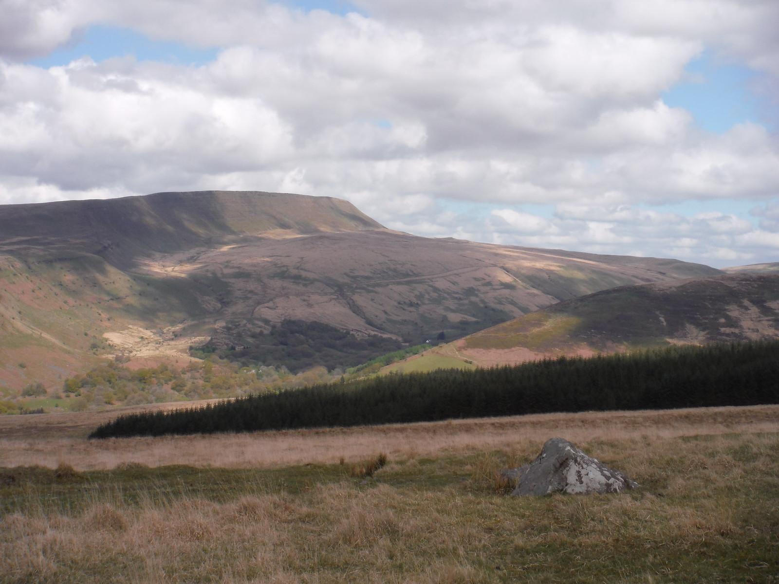 The Black Mountain (Y Mynydd Du) SWC Walk 307 - Fforest Fawr Traverse (Craig y Nos to Llwyn-y-celyn)