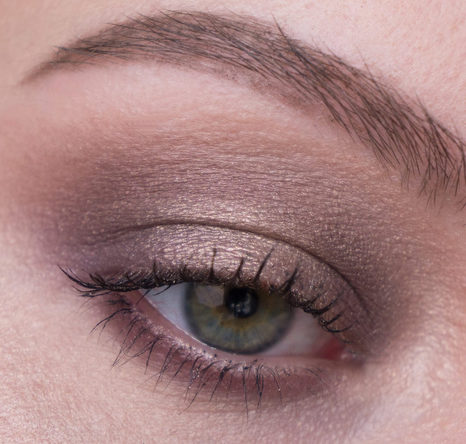 Smashbox Cover Shot Eye Palette Sultry