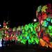 IMG_2797 - Festival of Light - Southampton - 12.02.18