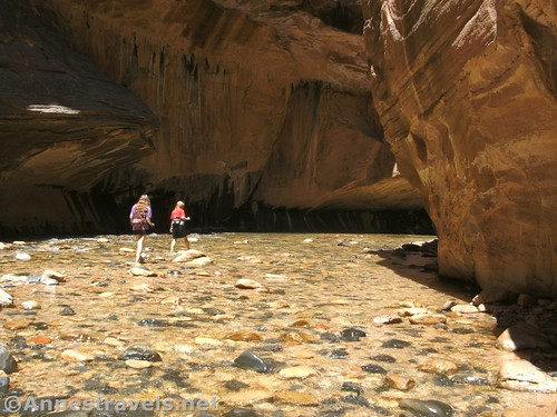 They're a little bit more able to hike (and swim) now: Walking up a shallow section of the Zion Narrows in Zion National Park, Utah
