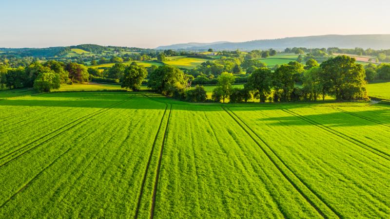 An arial photo of farm land