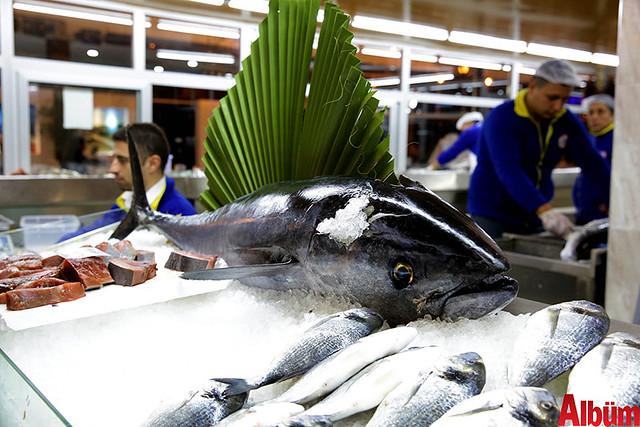 Düden Balık Çarşısı açıldı-8