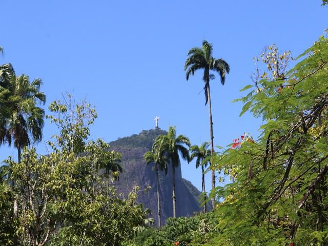 jardim botanico 1 atractii turistice rio de janeiro