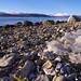 Marine litter. Plastic wrapping, already weakened by sunlight. by Snemann