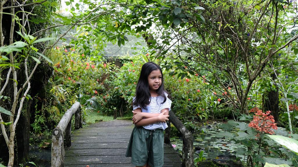 Bali Butterfly Park_0807