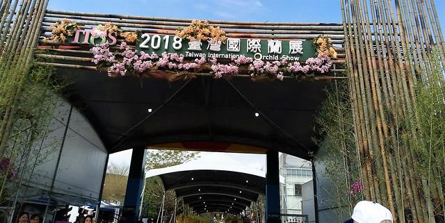 2018臺灣國際蘭展 (1)