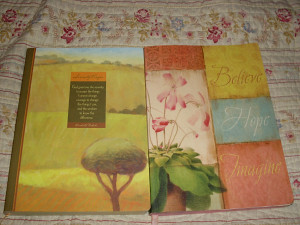 serenity-and-believe-covers
