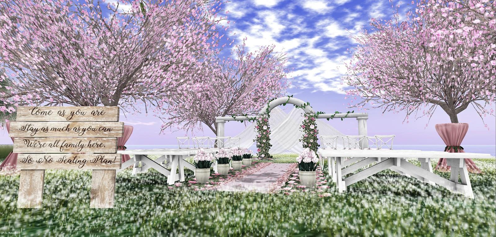 Home & Garden Therapy # 594