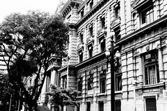 Pauliceia Street