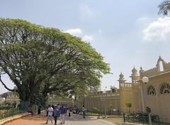 India (Mysore) Courtyard of Mysuru Palace