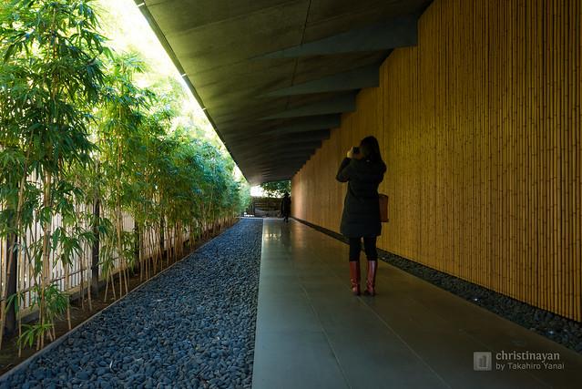 Garden to entrance of Nezu Museum (根津美術館)