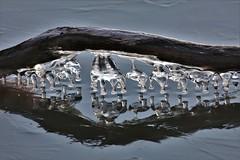 stick ice