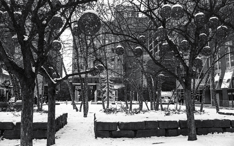 Yorkville Winter Decorations