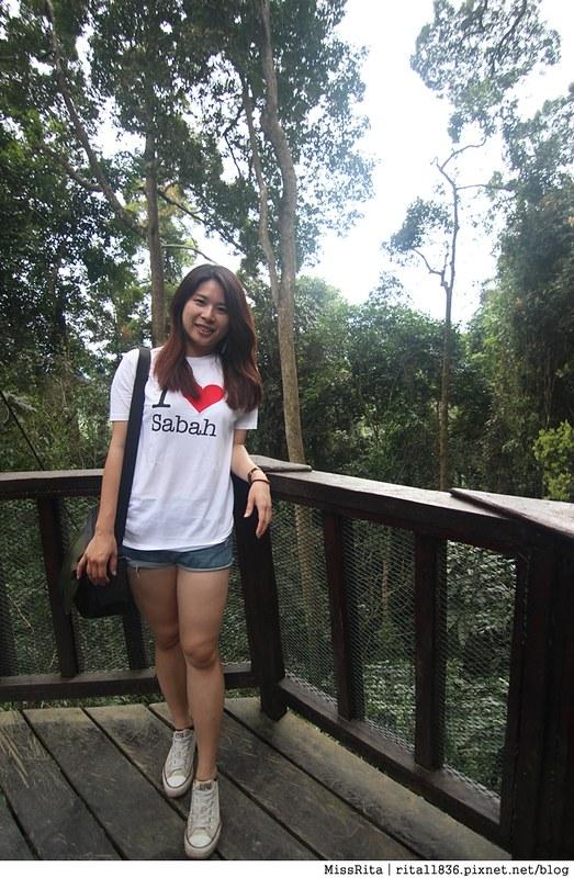 馬來西亞自由行 馬來西亞 沙巴 沙巴自由行 沙巴神山 神山公園 KinabaluPark Nabalu PORINGHOTSPRINGS 亞庇 波令溫泉 klook 客路 客路沙巴 客路自由行 客路沙巴行程63