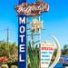 Daffodil Motel by Thomas Hawk