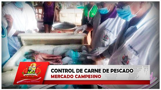 control-de-carne-de-pescado-mercado-campesino