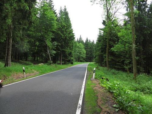20170605 07 149 Regia Wald Straße