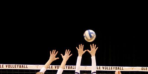 Angebot Volleyball