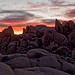 Joshua Tree National Park, Jumbo Rocks, Sunset