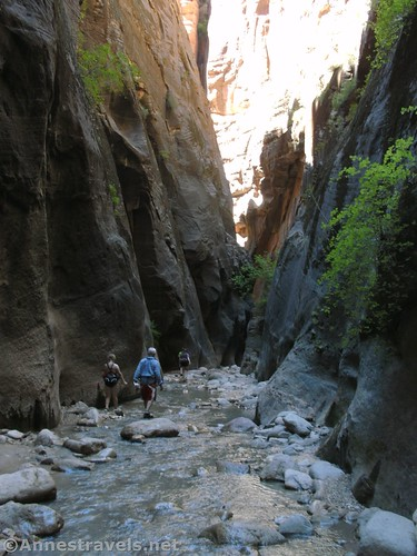 Walking back down Orderville Canyon in Zion National Park, Utah