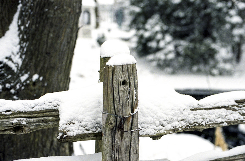 Snow Covered Fence_