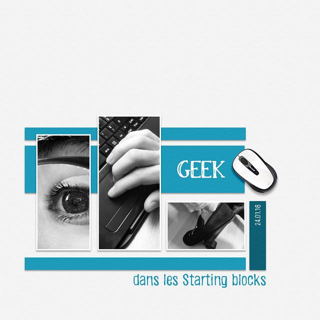 MOC 24 - Geek