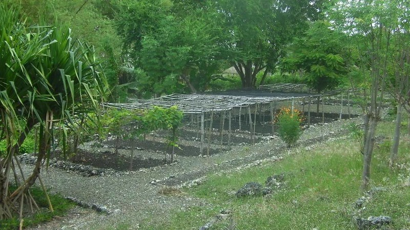 Terra Manna garden