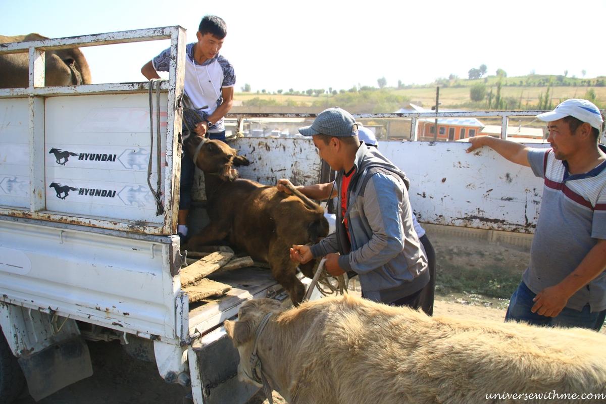 Kyrgyzstan Trip_018