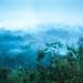 Foggy Valley by pramuditalina