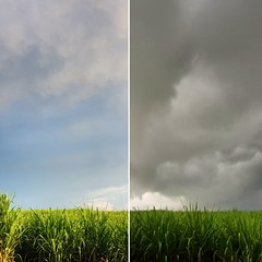 Weather contrast