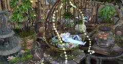 Fairy Tale Dreamer