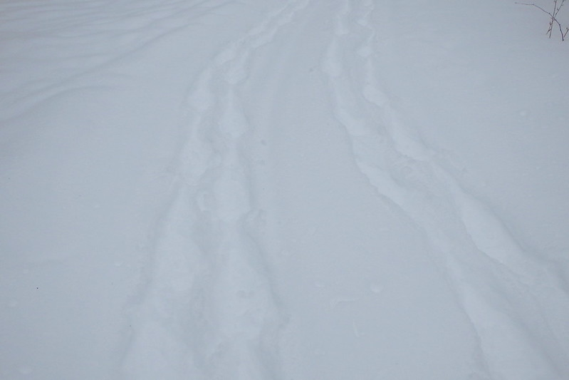 Looking back at two paths of snowshoe tracks.