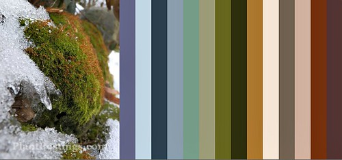 moss color palette