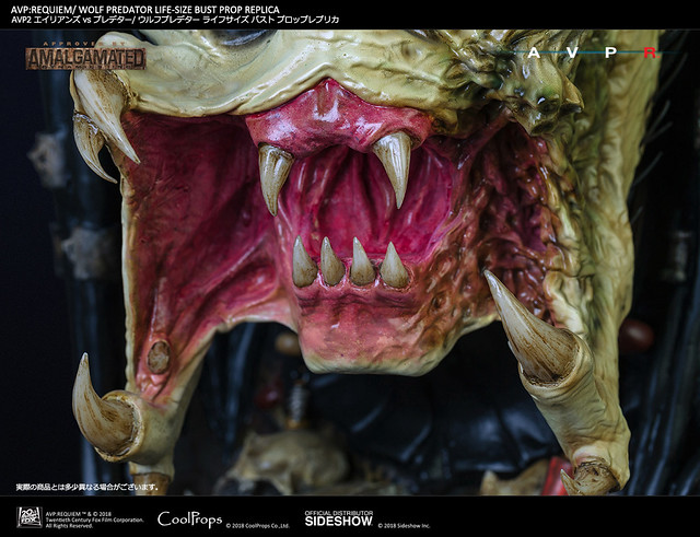 單槍匹馬收拾掉眾多異形的超強終極戰士!! CoolProps《異形戰場2:適者生存》孤狼 AVP:Requiem Wolf Predator 1:1 比例複製胸像作品