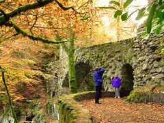 The Hermitage, Dunkeld, Scotland