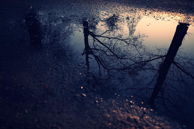 雨上がり夕暮れ