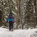 Nebo Trail