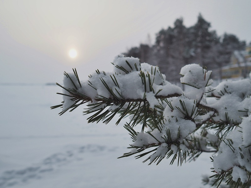 winter snow lumi suomi