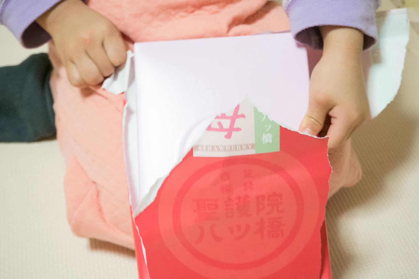 yatsuhashi_kyoto-1