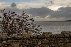 2018 - 01 - 16 - EOS 600D - Wales Coast Path - Greenfield - 008