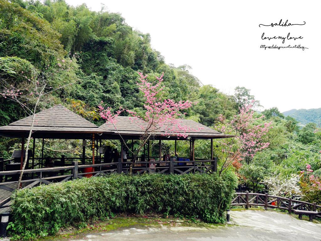 三峽一日遊景觀餐廳推薦花岩山林 (42)