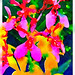 Colourful Thai orchids run through the photo app Waterlogue