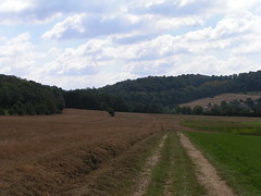 20070831 11983 0707 Jakobus Feld Wald Wiese Weg Hügel