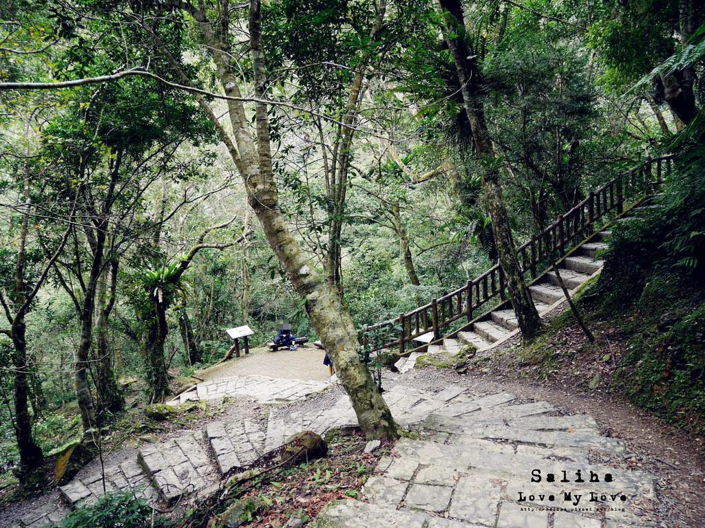 新北三峽一日遊踏青景點推薦滿月圓森林遊樂區 (28)
