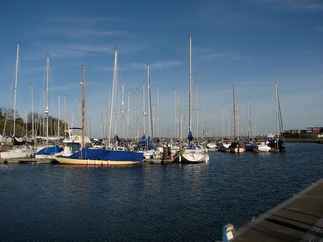 The marina at Shotley Gate