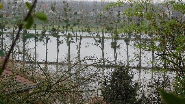 28/01/2018 Seine à Conflans toujours plus haute