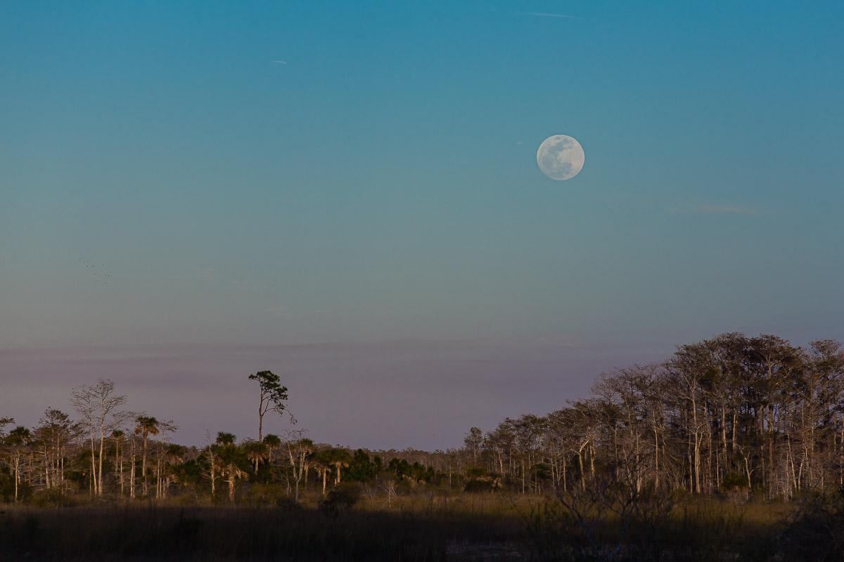 Super blue moon rise
