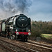 oliver cromwell 5 (1 of 1)